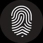 Branding / Identity